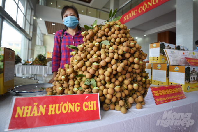 It is expected that in 2021, the total production volume of longan across the country will reach 637,000 tons. Photo: Tung Dinh.