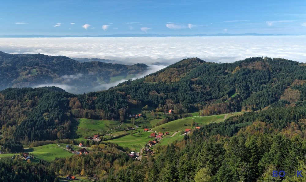Black-Forest-Region-Germa